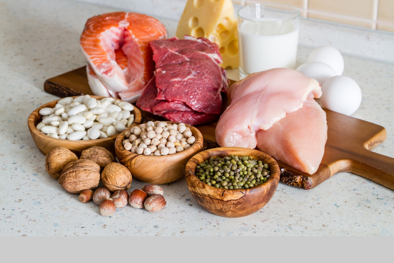 6 Important Roles of Protein